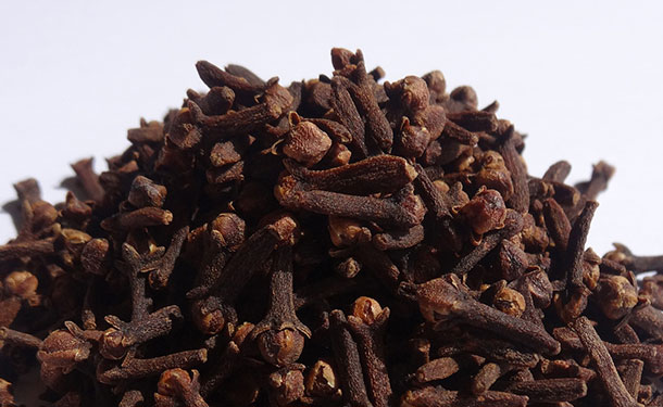 Eugenia species produce cloves from dried buds